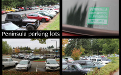 Perks, Problems and Protocol of the Parking Policy