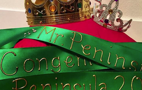 Meet the 2017 Mr. Peninsula Contestants
