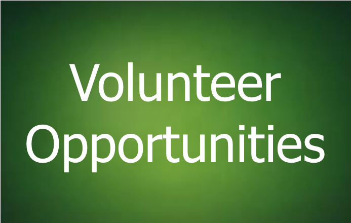 Volunteer Opportunities for PHS Students