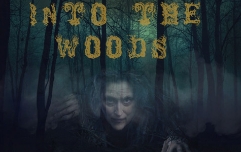 Into the Woods? More like lost in the woods