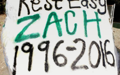 School rock painted in loving memory of Zach.