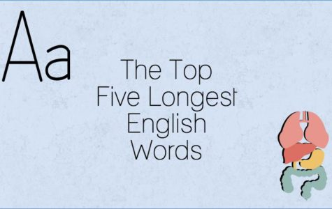 The Top Five Longest English Words