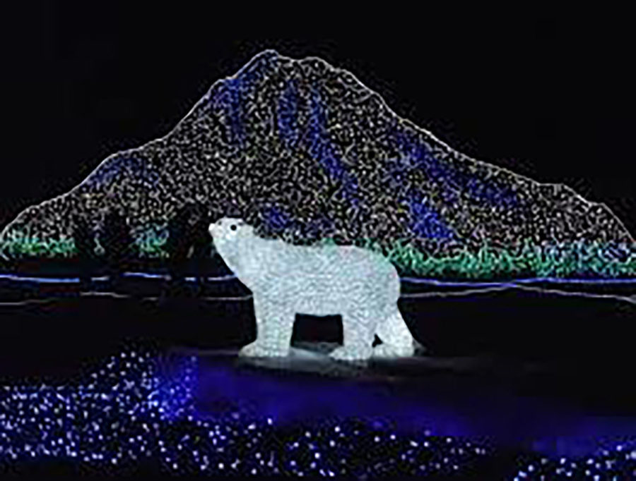 Zoolights%3A+Where+Dreams+Become+Realities