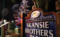 Harbor's Annual Lighting Bringing The Gig Together