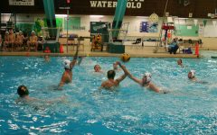 Boy's Water Polo