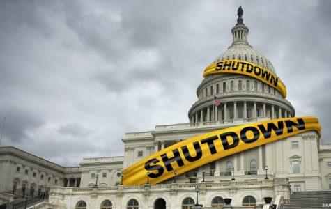 The Government Shutdown