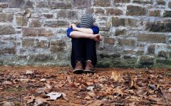 The Decline of Adolescent Mental Health
