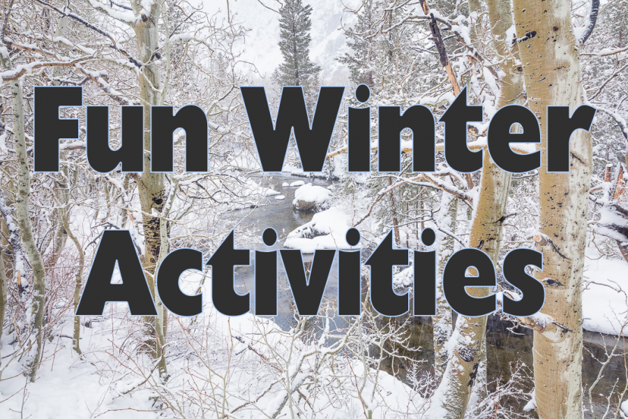 Fun Winter Activities