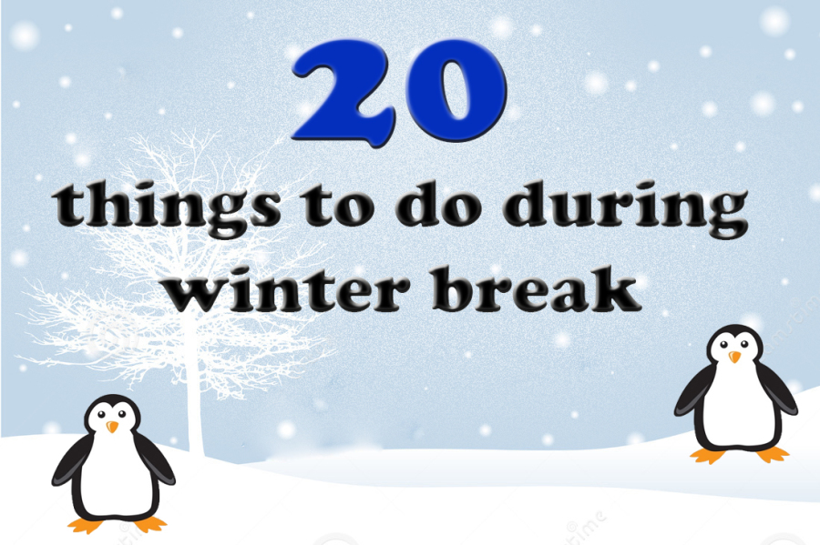 Twenty things to do during Winter Break