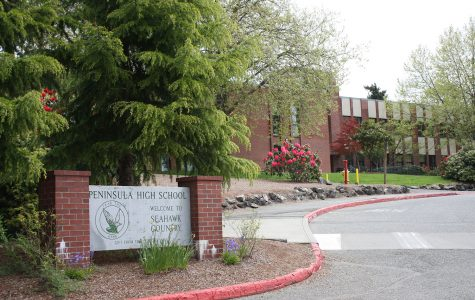 Gun Violence in schools: How does Peninsula feel?